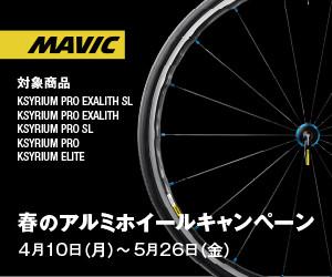 Mavic_300x250px